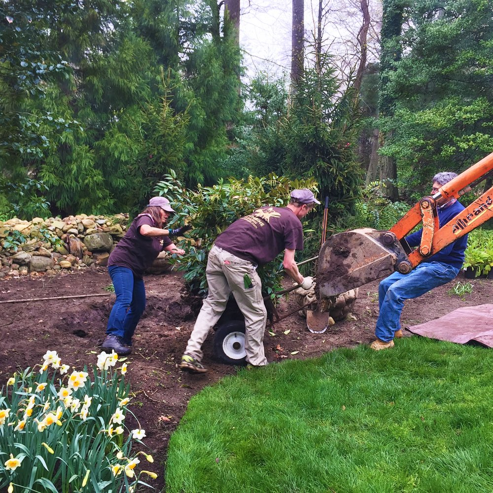 Landscape professionals in garden with flowers.