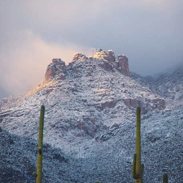 So I know I've been gone for quite some time without posts but that's not because I've been idle but rather because I've been practicing! Here are some photos of early January when it snowed a lot near Tucson and so a trip to the Sabino Canyon was irresistible! More photos to come! _____________  #snow #snowyarizona #sabino #canyon #sabinocanyon #sunset #mountain #mountainsunset #cacti #saguaro #tucson #coldweather #colors #panorama #meltingsnow #nikon #d7200 #southweststorytellers #cloud #cloudymountains #snowyclouds #pastelcolors #arizonasnow #sunsetsnow #snowsunset #ig_arizona