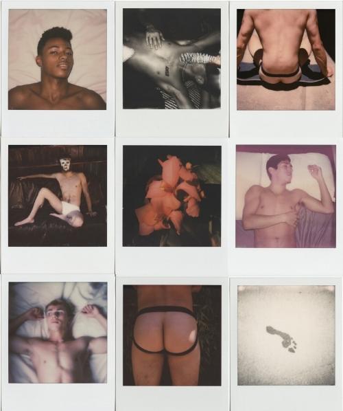 Polaroids-2017-final.jpg