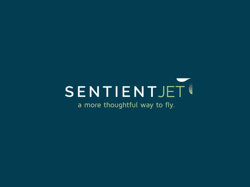 16-Sentient-LogoDesign_01.jpg