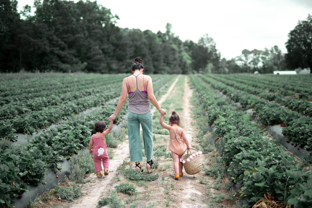 One of my favorite pics. Loved walking down these strawberry rows with my girls.