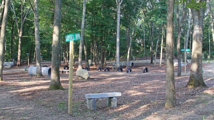 The Randolph Dog Park, A Natural Canopy Dog Park, 2018