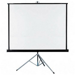 Projector Screen - $110.00