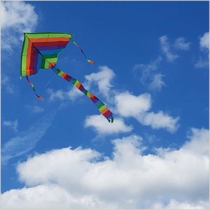 Make & fly a kite