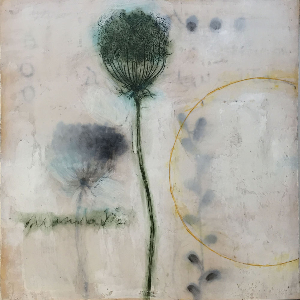 "Queen Anne's Lace-2  10""x10"" Encaustic and oil stick on wood panel (private collection)"
