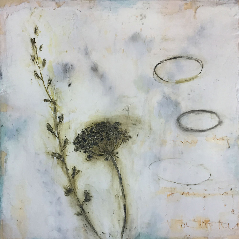 "Queen Anne's Lace-3  10""x10""  Encaustic and oil stick on wood panel"