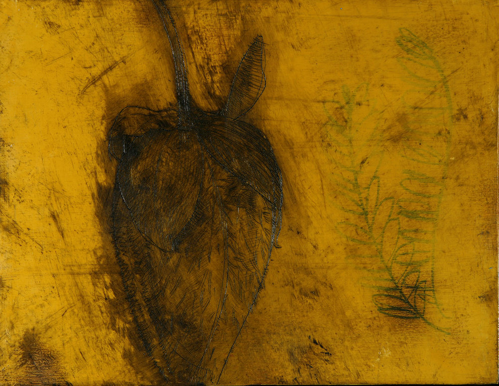 "Ochre Pod  13""x9"" Encaustic and oil stick on wood panel"