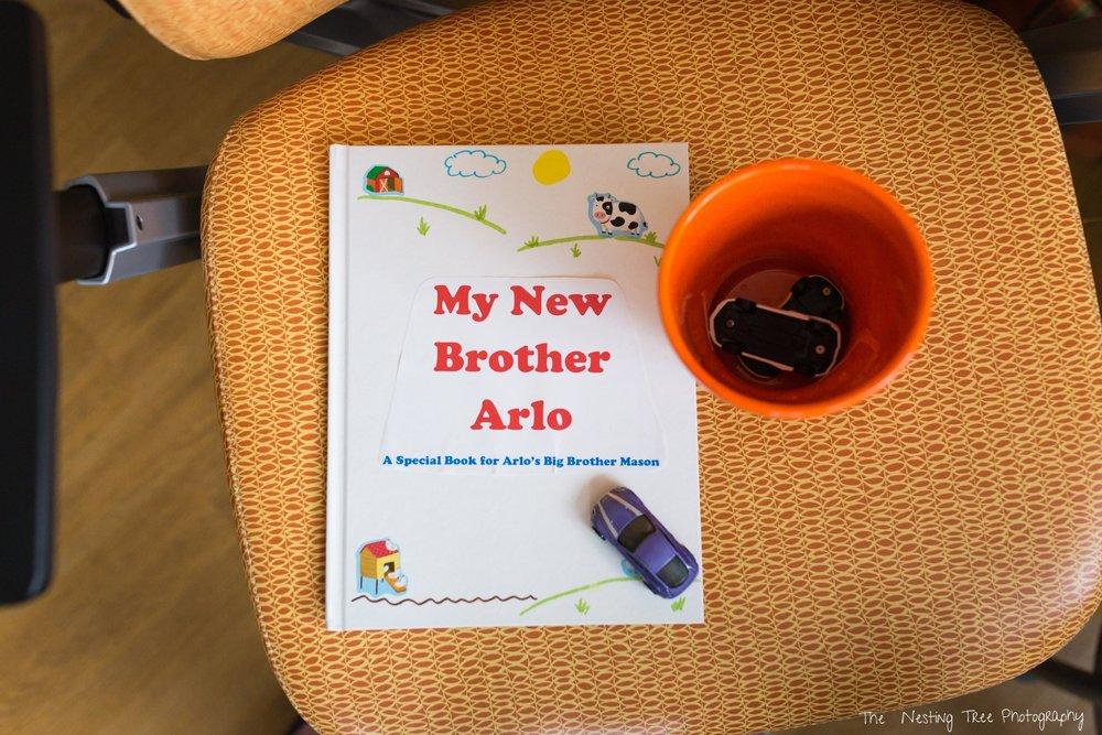 Sibling book