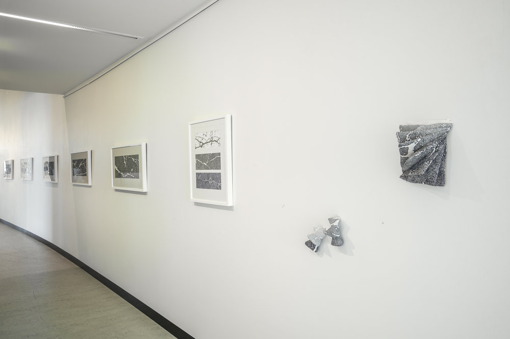 Jemima Parker, image from  Transitions,  solo exhibition at Belconnen Arts Centre, 2014. Photo by Brenton McGeachie.