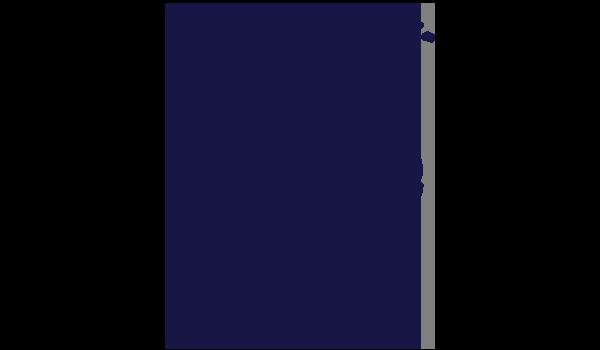 Palm Aztec.png