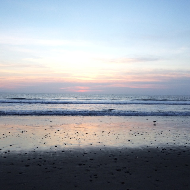 Sunset with Joy and the little sea bird — Ventura Beach, California