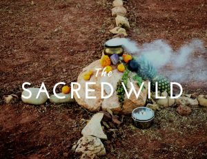 SACRed WILD