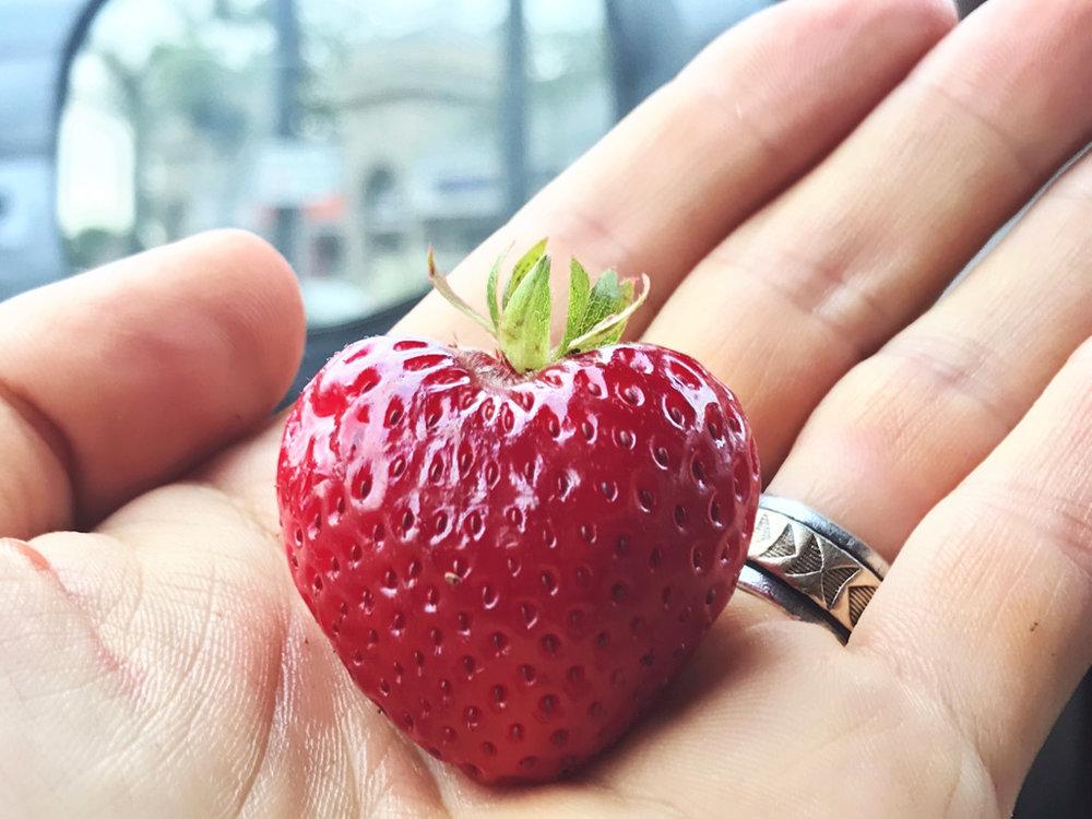 Soulmates-StrawberryHeart-by-Satya-Colombo_1024-web.jpg