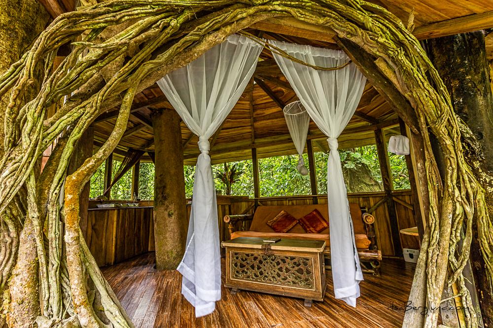 Costa Rica glamping, Costa Rica camping, hotels Costa Rica, best Costa Rica hotels, Costa Rica treehouses, Finca Bellavista
