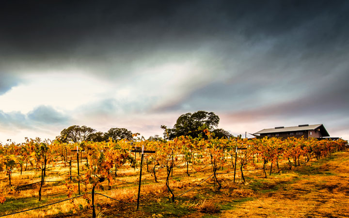 hickman-family-vineyards.jpg