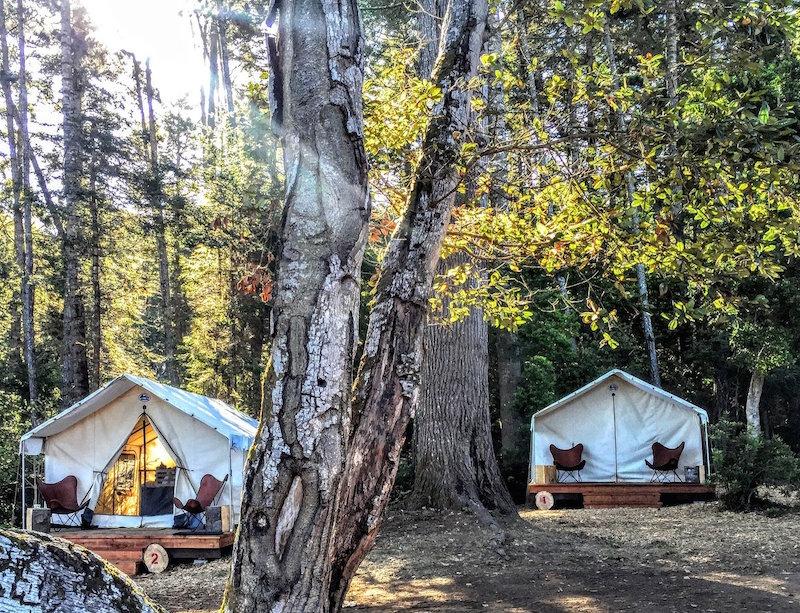 mendocino-grove-camping.jpg
