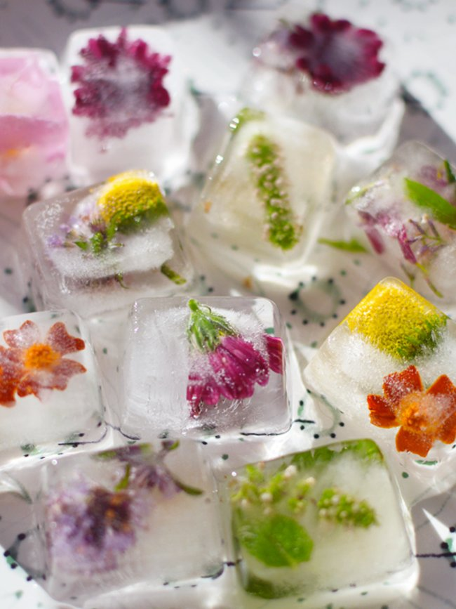 floral-ice-cube-5.jpg