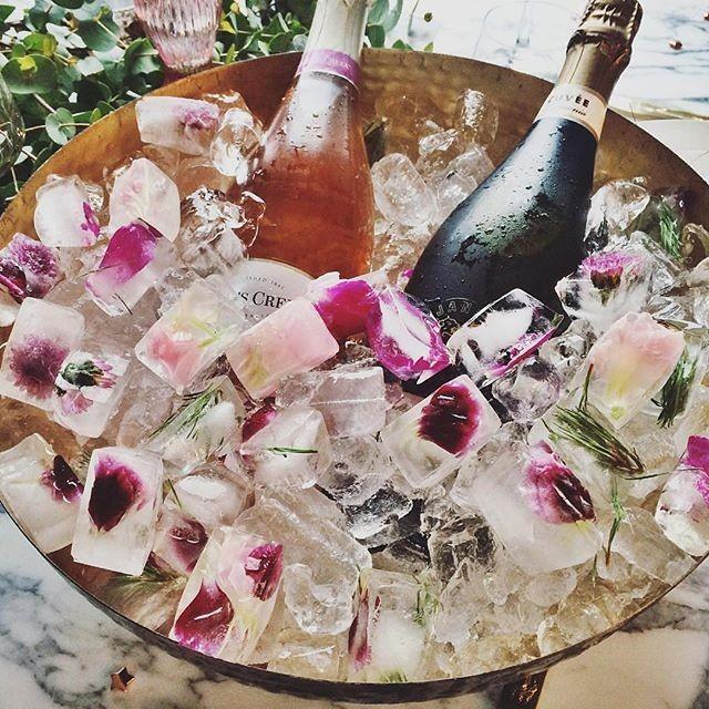 nouba-on-instagram-a-little-tipple-inspiration-courtesy-of-sydney-style-guru-paulinemorrissey-love-those-floral-ice-cubes-via-beckrocchiphotography.jpg