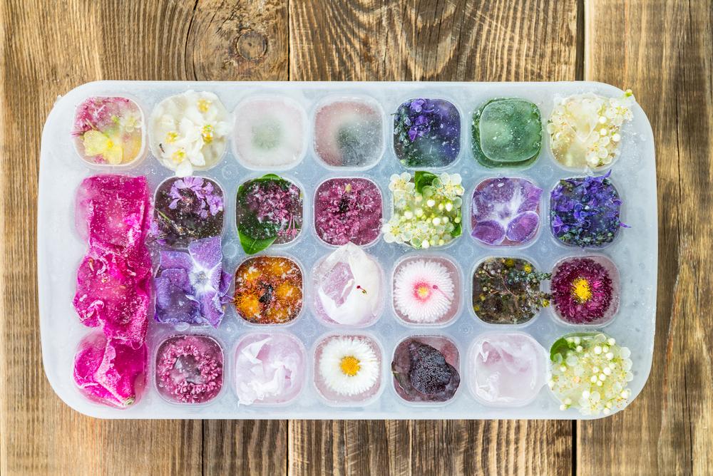 glacons-fleurs.jpg