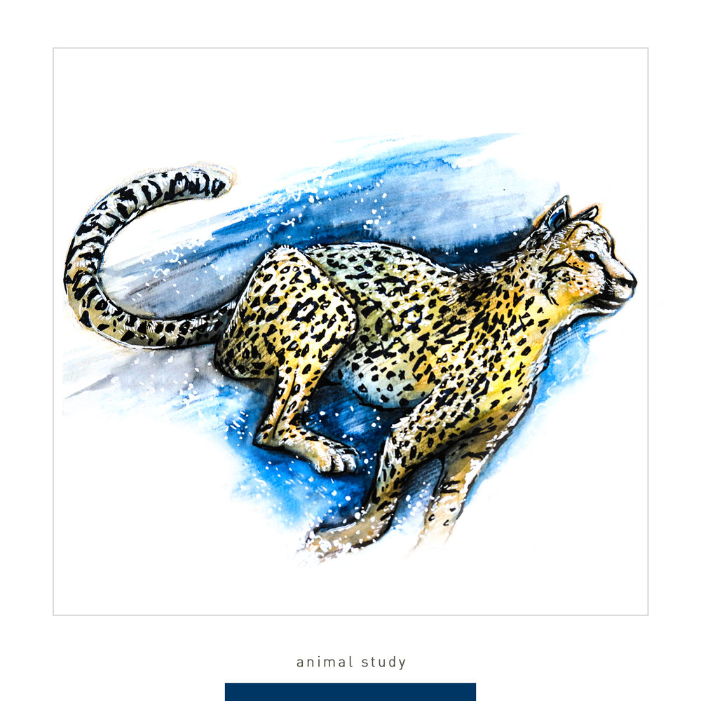 art 200 -animal1.jpg