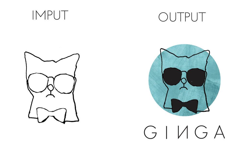 imput.output.jpg