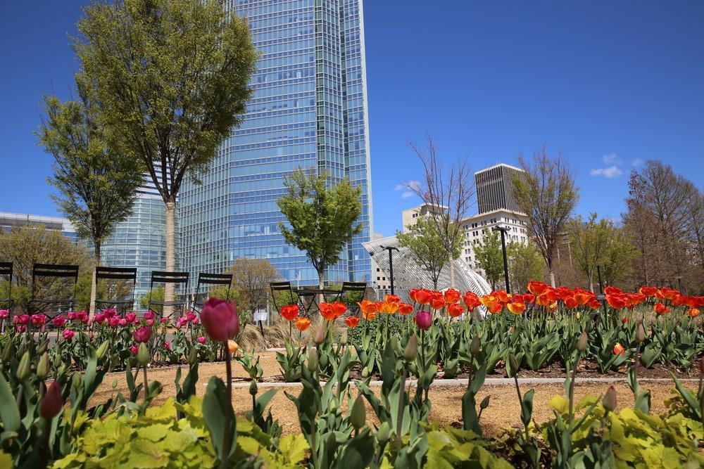 Myriad Gardens okc.JPG