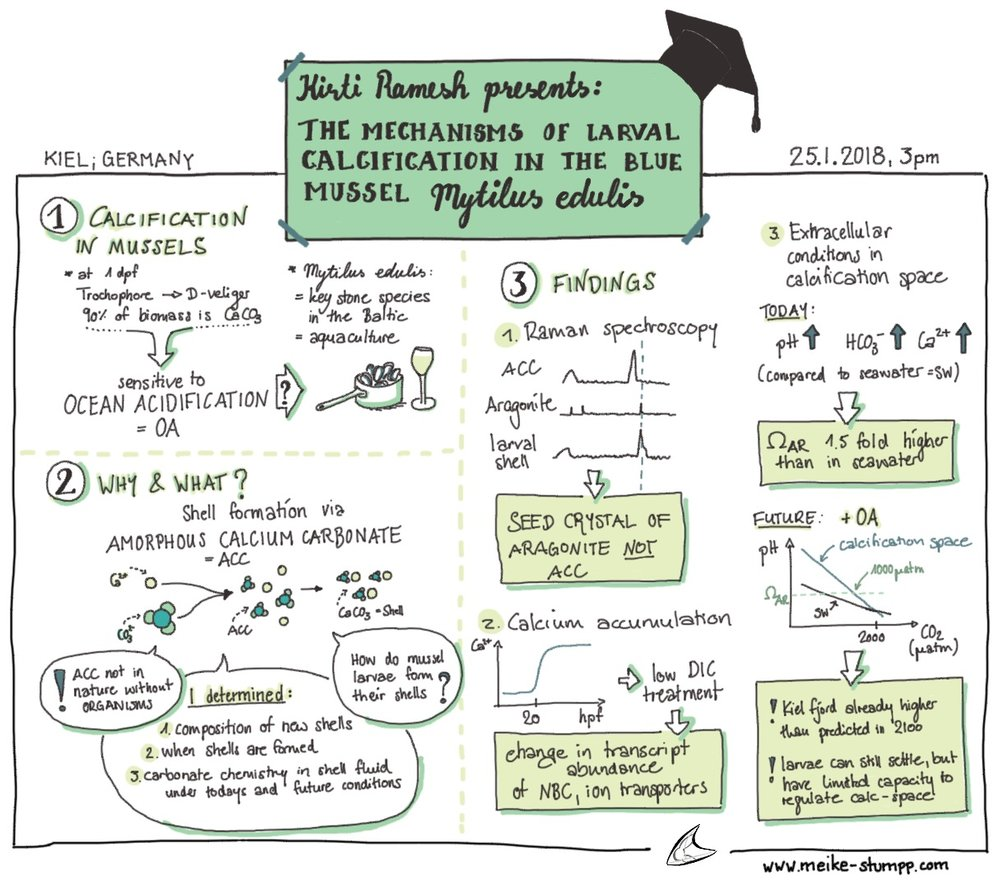 Sketchnote of a friend's PhD defense: Kirti Ramesh, 25.01.2018