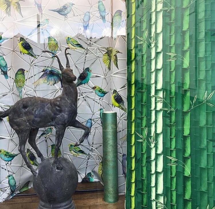 Matthew Williamson wallpapers