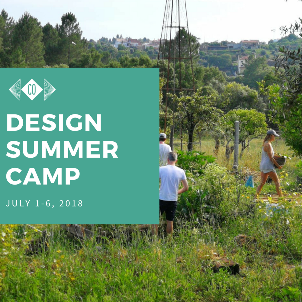 Design summer camp july