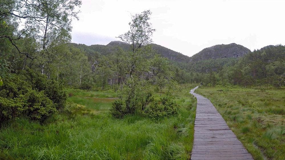 然後還迎來一段平坦的木棧步道