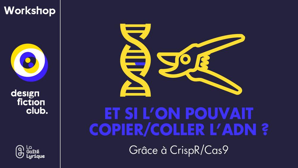 designfictionclub-workshop-crispR-Cas9-3.jpg