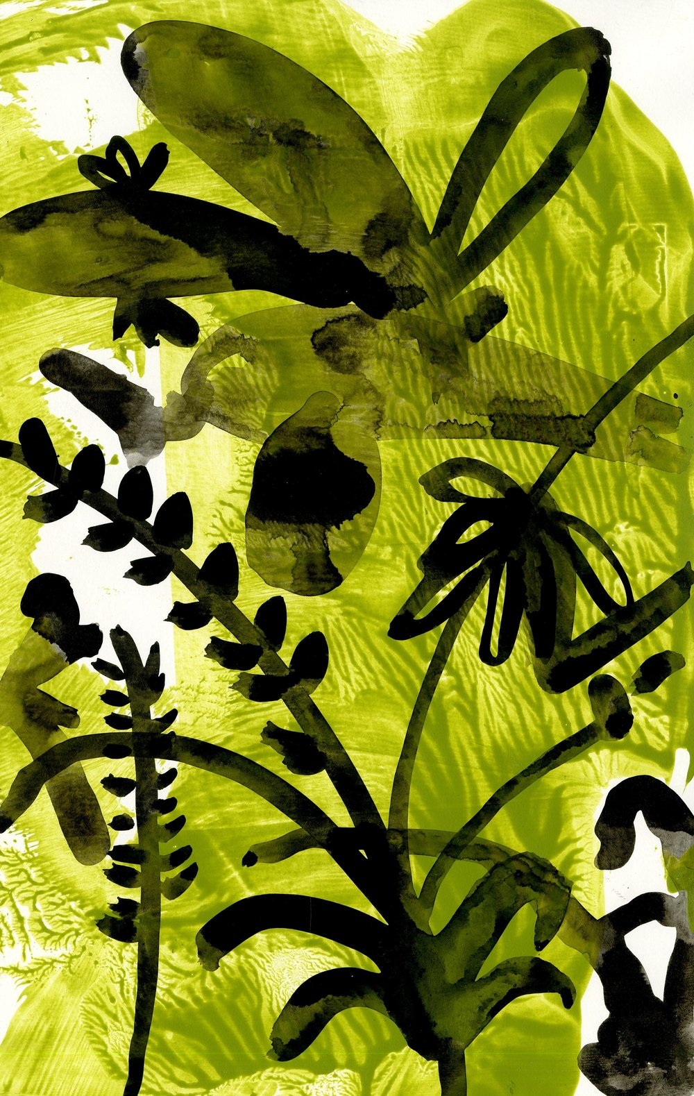 Chlorophyll tea I