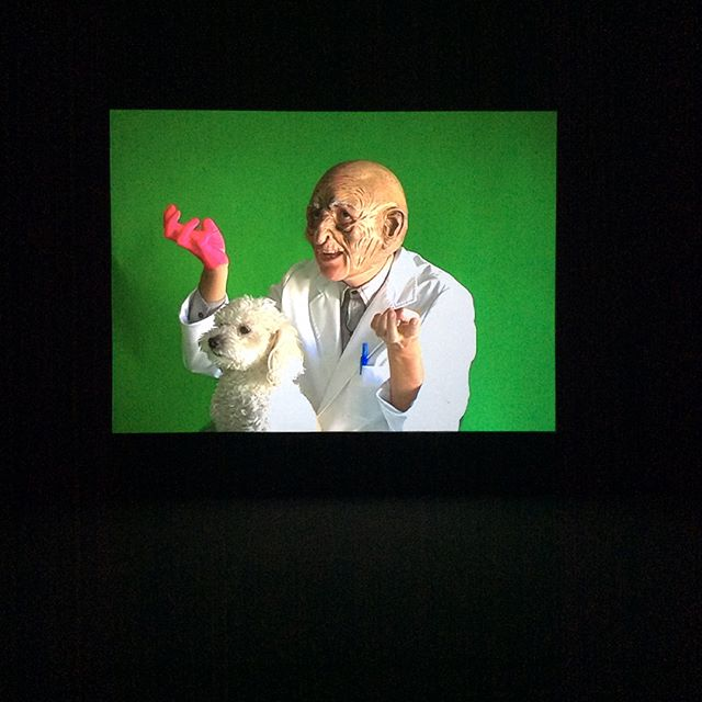 """Through disruption and play, 'Mysterious Fires' asks its audience to consider where fallibility, care, love and laughter (affect) belong in a situation of absolute, super-charged intelligence -especially if intelligence is defined as the virtuosic mastery of goal-achievement."" Come see #HarryDodge's masterful video ""Mysterious Fires"" at #GrandArmyCollective. Thru October 28th!!!!"