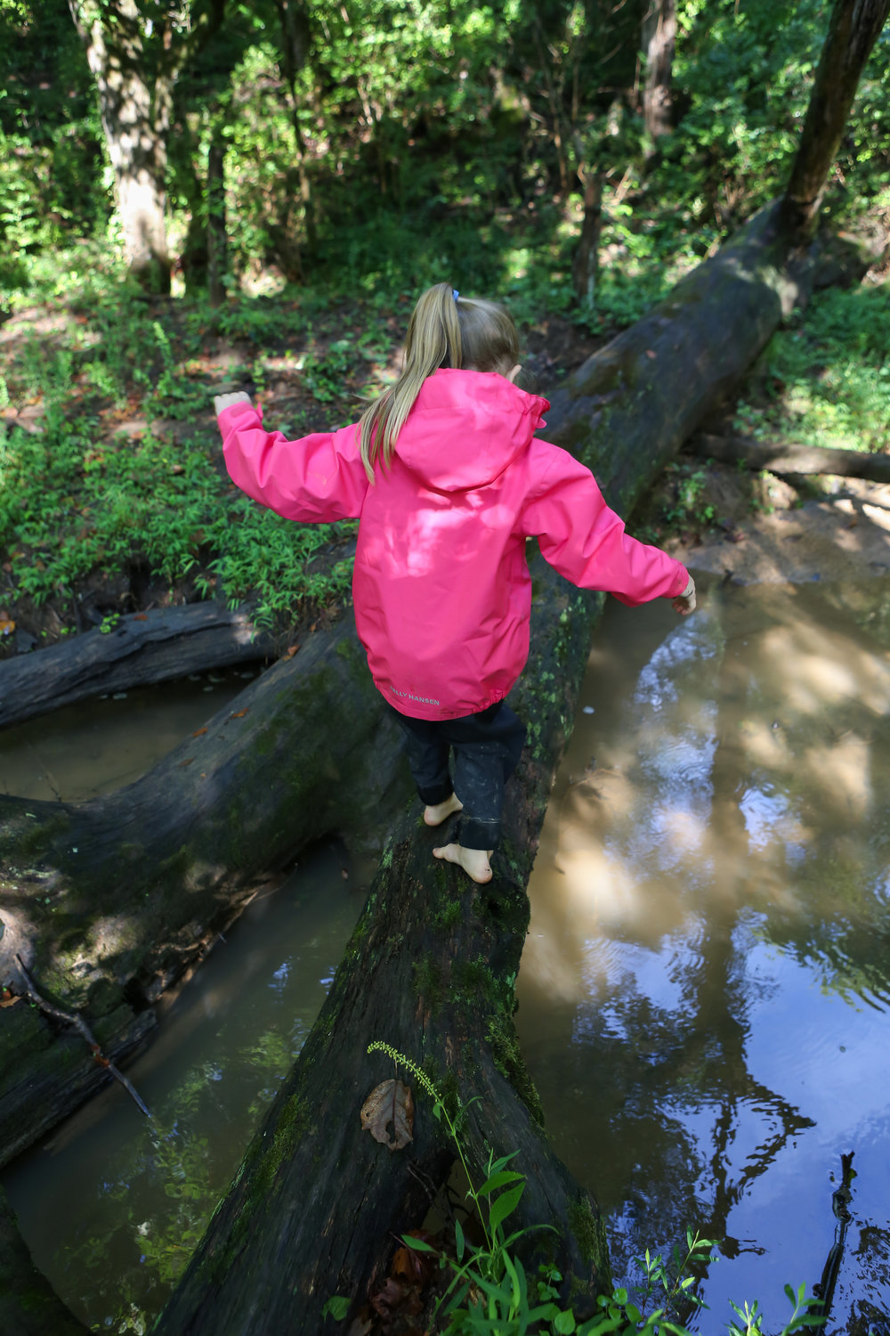 One of our kids tries her balance across a log across a stream. One of the hallmarks of forest school is risk assessment. This instills courage and learning naturally what our bodies can and cannot do. It also instills true confidence that is in balance with real situations.