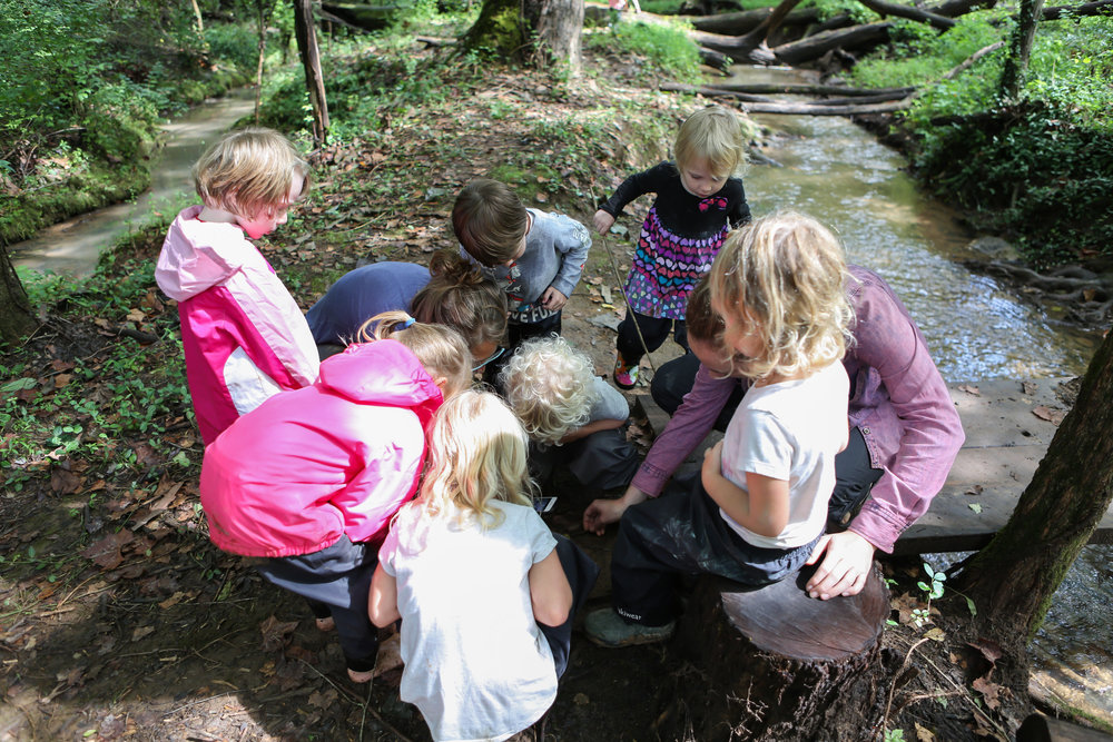 Forest School Finals-Forest School Finals-0082.jpg
