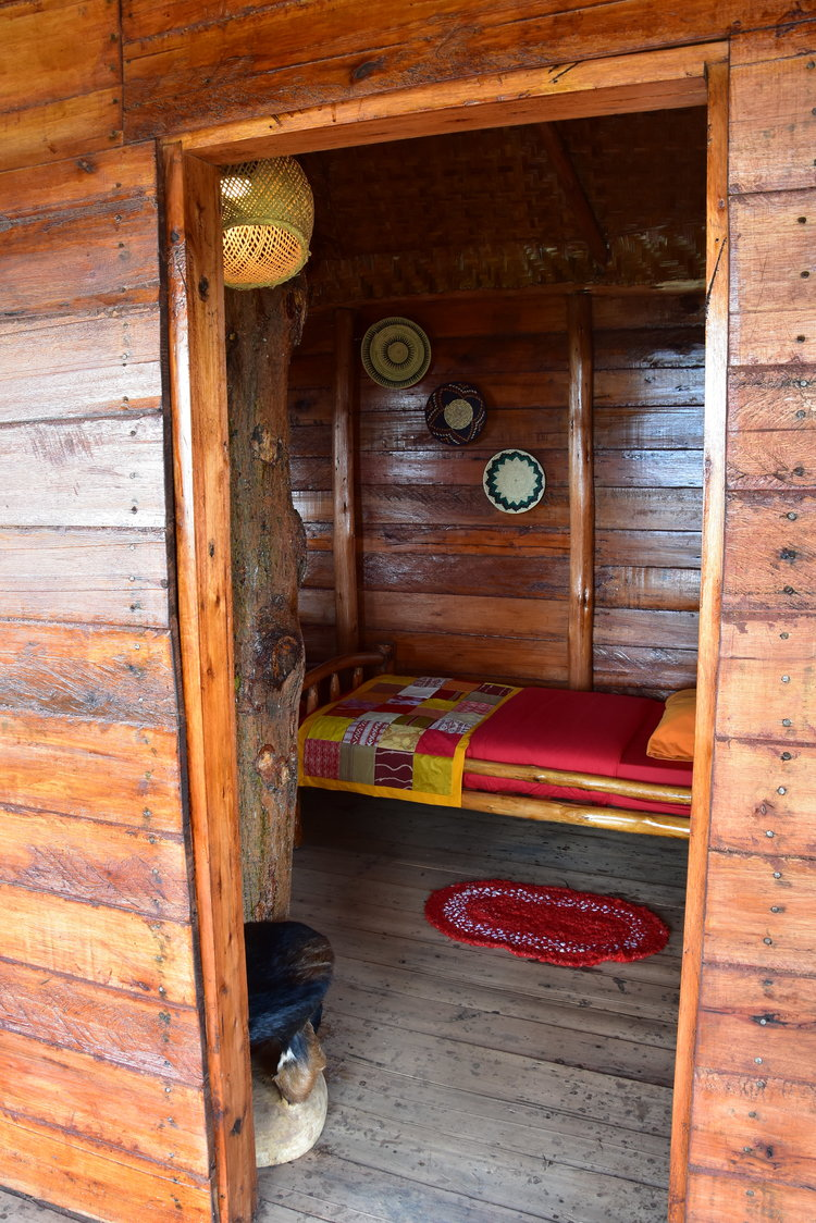 Tree nest bedroom