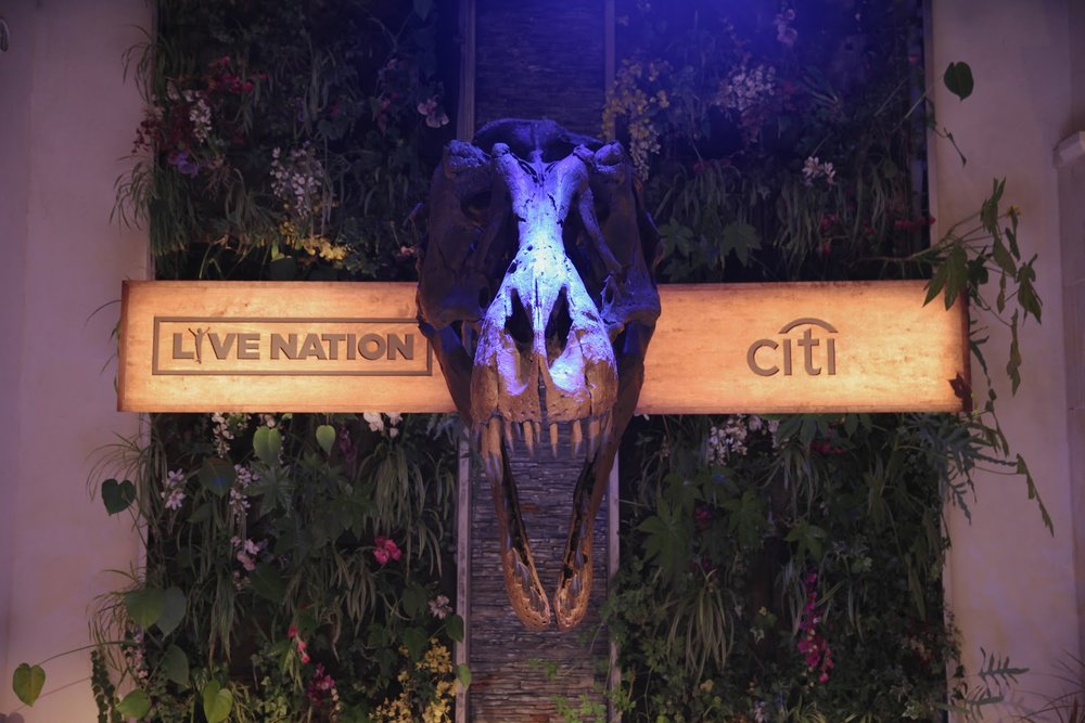 Situation - Live Nation, the world's largest live entertainment company, needed to establish and execute a strategic framework for its presence at Cannes Lions including an exclusive party with Citi, its largest client.