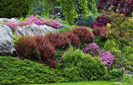 lovable-garden-plant-design-design-a-garden-focal-point.jpg
