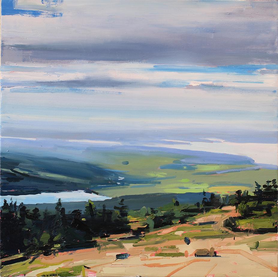 """Acadia National Park 2 - 40"""" x 40"""" - oil on canvas"""