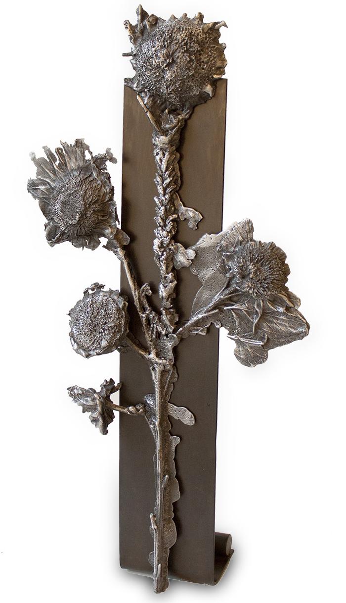 """Helianthus Annuus 4 - 20"""" high - aluminum on ebonized steel"""