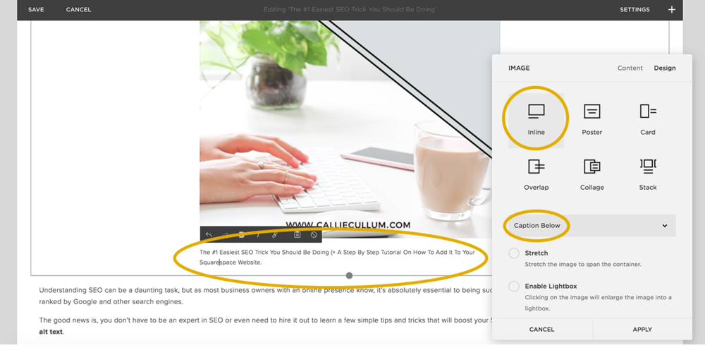 The Easiest SEO Trick You HAVE to be doing RIGHT NOW.