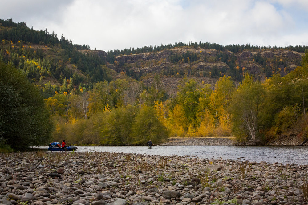 Washington Fly Fishing Guide Service. photo Caldwell Rohrbach.