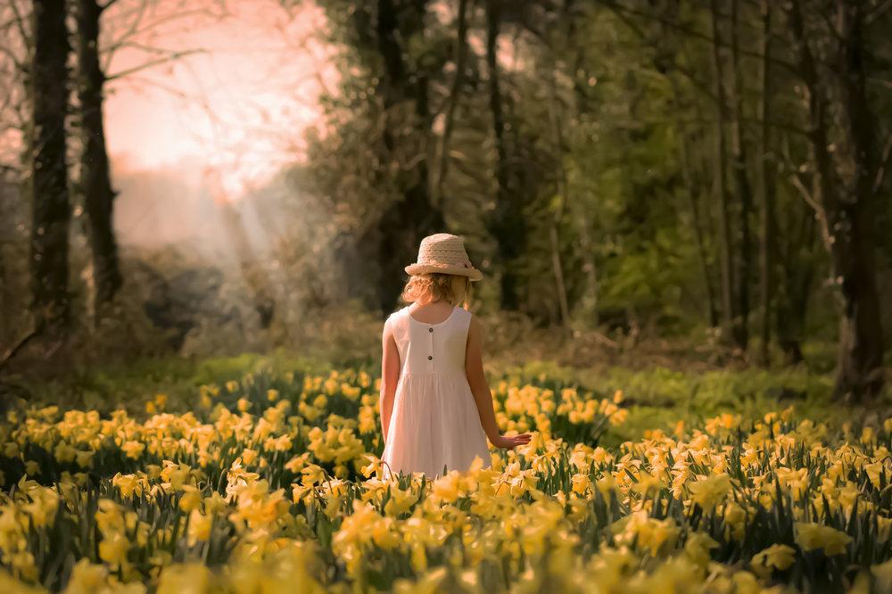 Betty Daffodil Walk 1.jpg