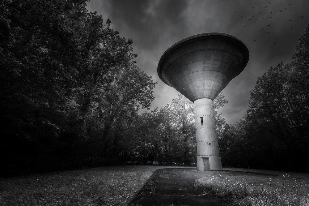 Mushroom-B.jpg