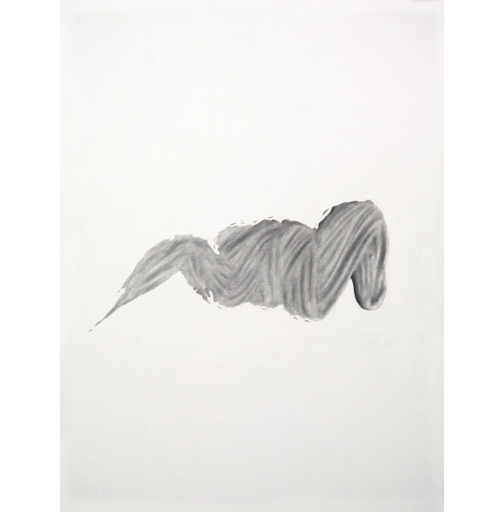 "Lexicon 6, 2013, graphite on paper, 24"" x 18"""