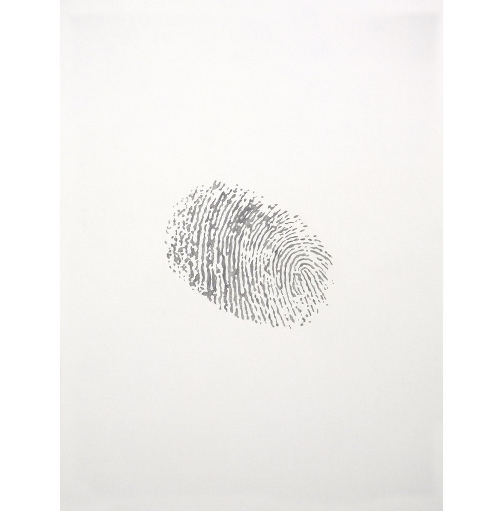 "Lexicon 11, 2013, graphite on paper, 24"" x 18"""