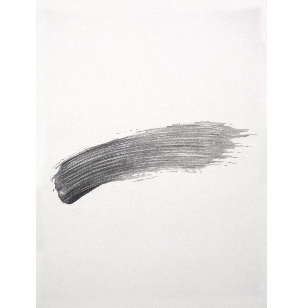 "Lexicon 24, 2013, graphite on paper, 24"" x 18"""