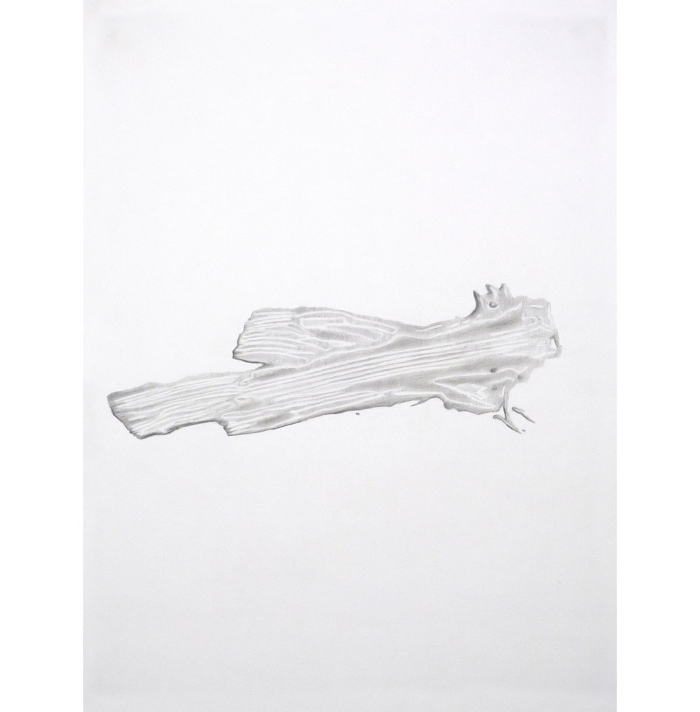 "Lexicon 36, 2013, graphite on paper, 24"" x 18"""