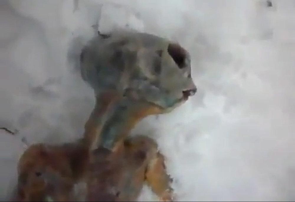Alien Hoax Russia 2.jpg