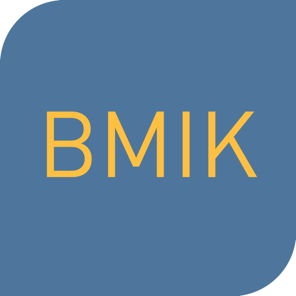 Kurslogo_08_BMIK.png